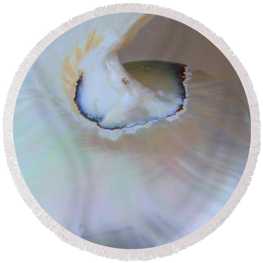 Shells Round Beach Towel featuring the photograph Nautilus Sea Shell by Mary Deal