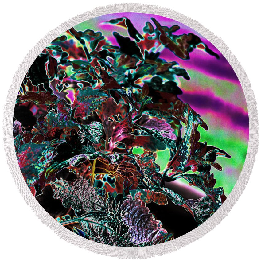 Abstract Art Round Beach Towel featuring the photograph Neon Coleus by Sylvia Thornton