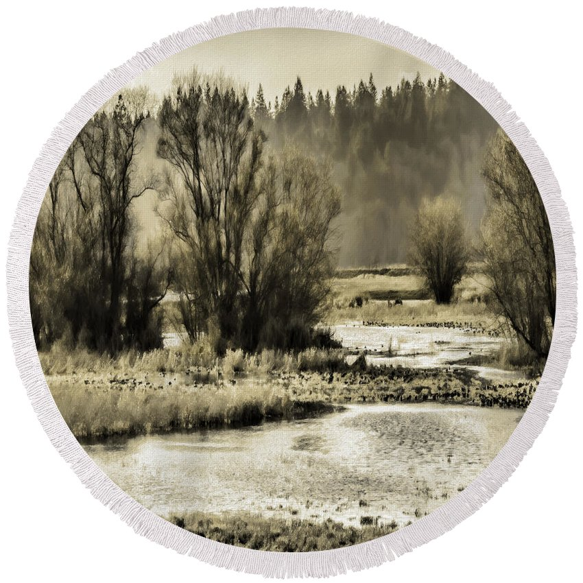 Nisqually Round Beach Towel featuring the photograph Nisqually Tide Pools by Jean OKeeffe Macro Abundance Art