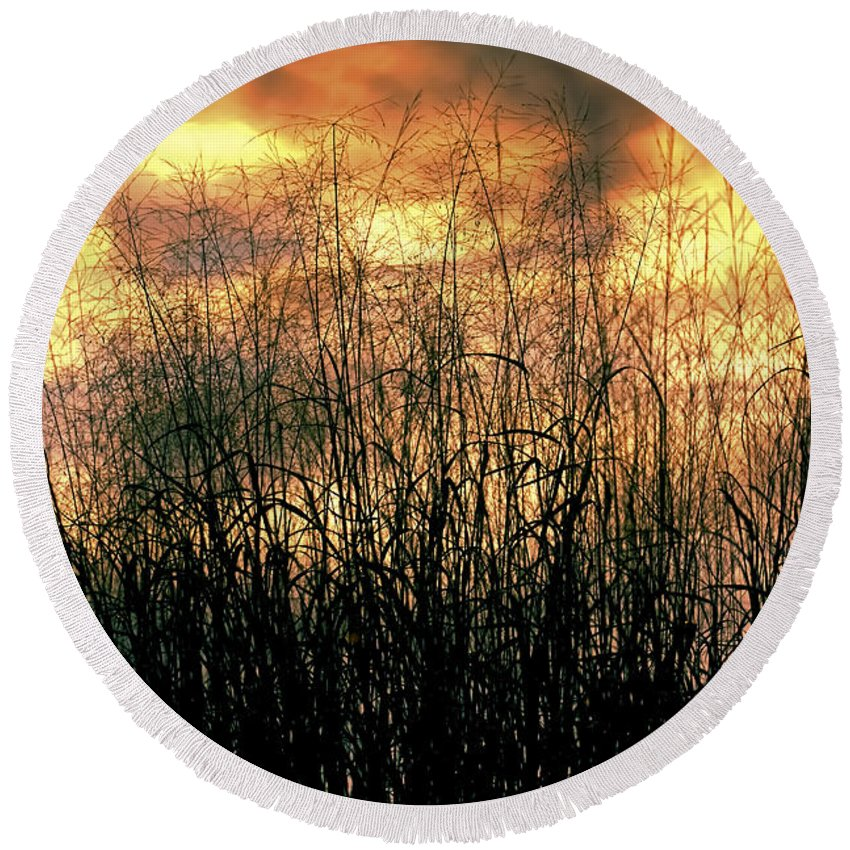 Noble Grasses Round Beach Towel featuring the photograph Noble Grasses by Gary Holmes