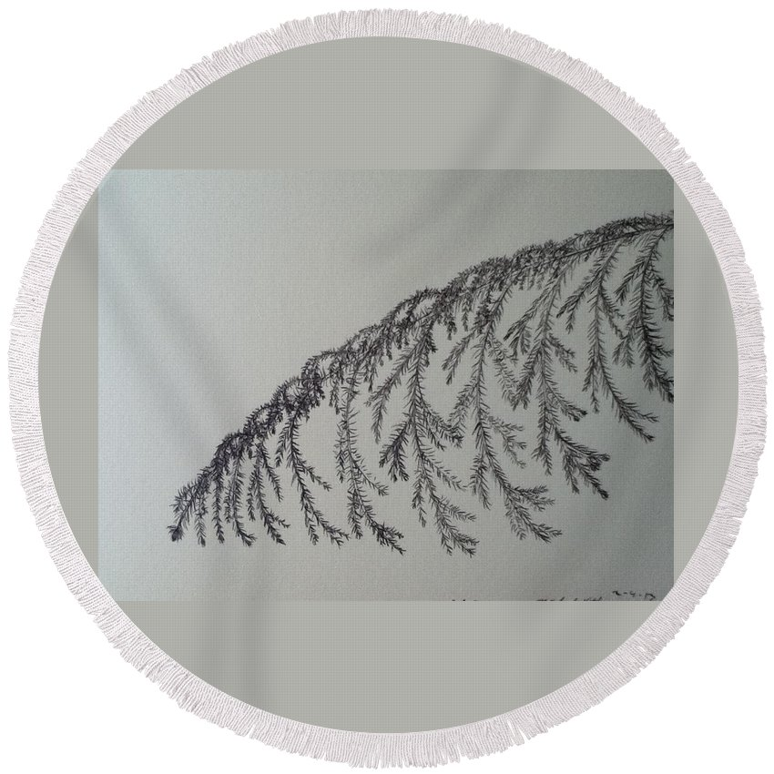 Branch Round Beach Towel featuring the drawing Norfolk Pine by Kimberly Vital