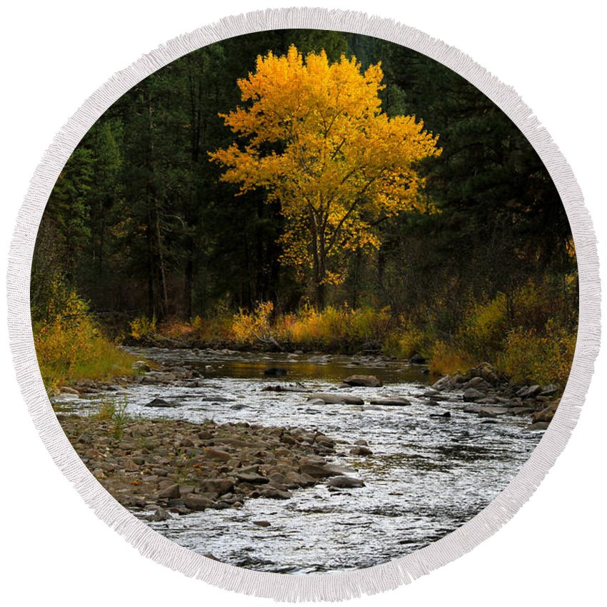 Landscape Round Beach Towel featuring the photograph October Beauty Along Grimes Creek by Ed Riche