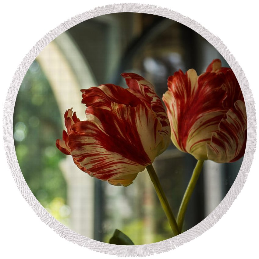 Tulips Round Beach Towel featuring the photograph Of Tulips And Windows by Georgia Mizuleva