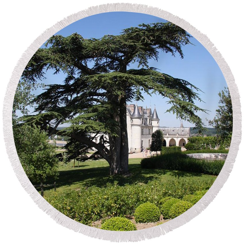 Cedar Round Beach Towel featuring the photograph Old Cedar At Chateau Amboise by Christiane Schulze Art And Photography