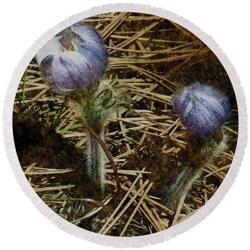 Colorado Round Beach Towel featuring the painting On The Forest Floor by RC DeWinter