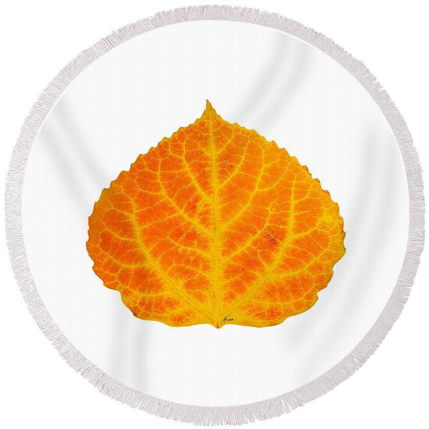 Aspen Leaf Round Beach Towel featuring the digital art Orange And Yellow Aspen Leaf 3 by Agustin Goba