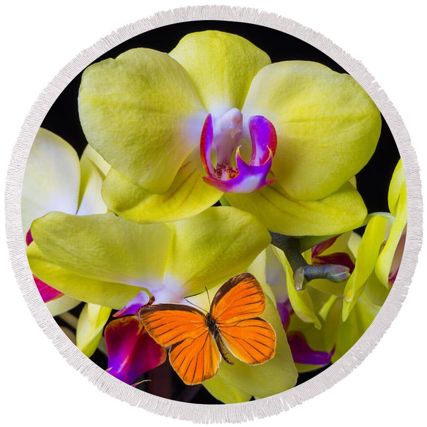 Yellow Orchid Round Beach Towel featuring the photograph Orange Butterfly And Yellow Orchids by Garry Gay