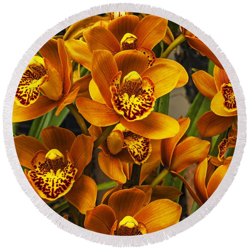 Orchid Round Beach Towel featuring the photograph Orange Cymbidium by Jess Kraft
