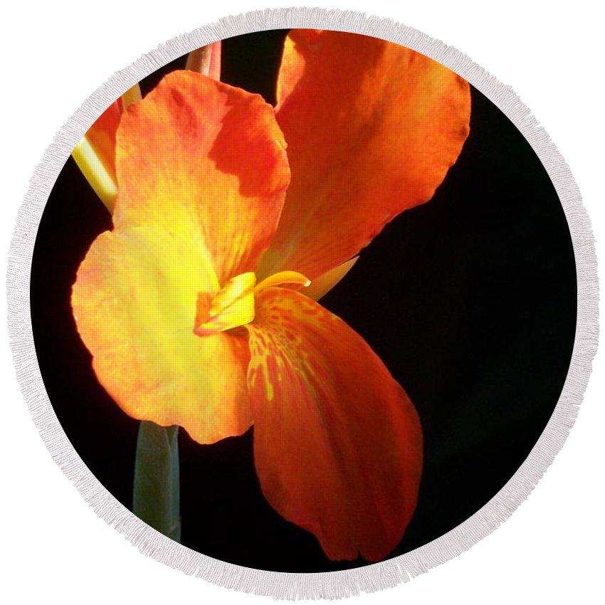 Garden Round Beach Towel featuring the photograph Orange Flower Canna by Eric Schiabor