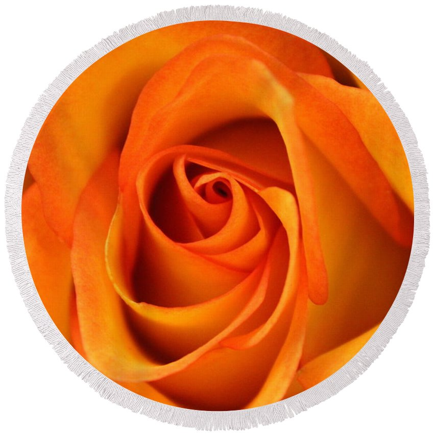Joseph Skompski Round Beach Towel featuring the photograph Orange Rose by Joseph Skompski