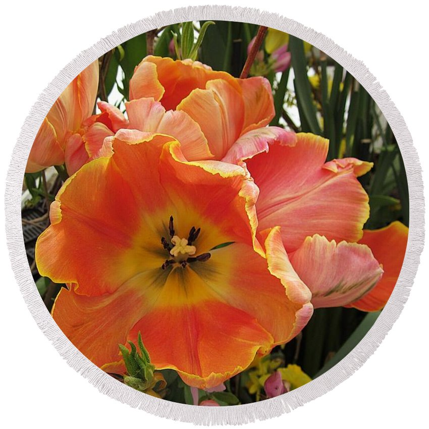 Round Beach Towel featuring the photograph Orange Tulips by MTBobbins Photography