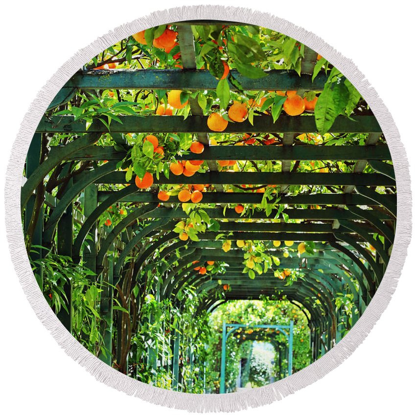 Orange And Green Round Beach Towel featuring the photograph Oranges And Lemons On A Green Trellis by Brooke T Ryan