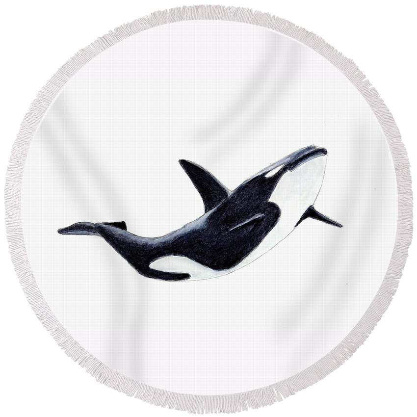 Animals Round Beach Towel featuring the painting Orca - Killer Whale by Michael Vigliotti