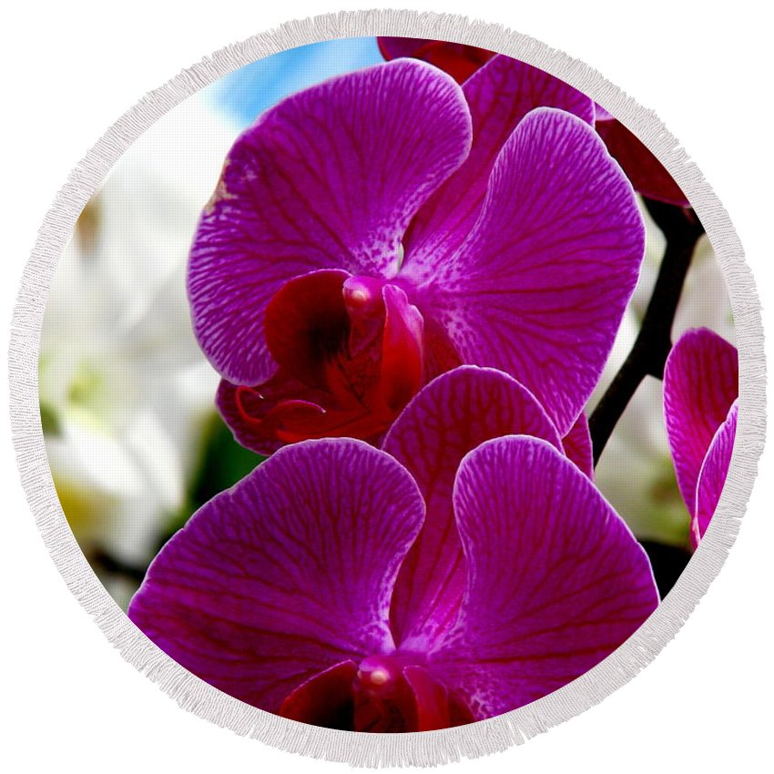 Art For The Wall...patzer Photography Round Beach Towel featuring the photograph Orchid by Greg Patzer