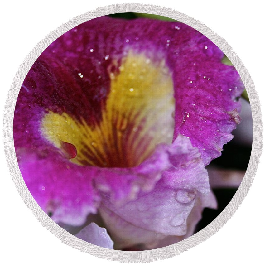 Flower Round Beach Towel featuring the photograph Orchid Heart And Soul by Susan Herber