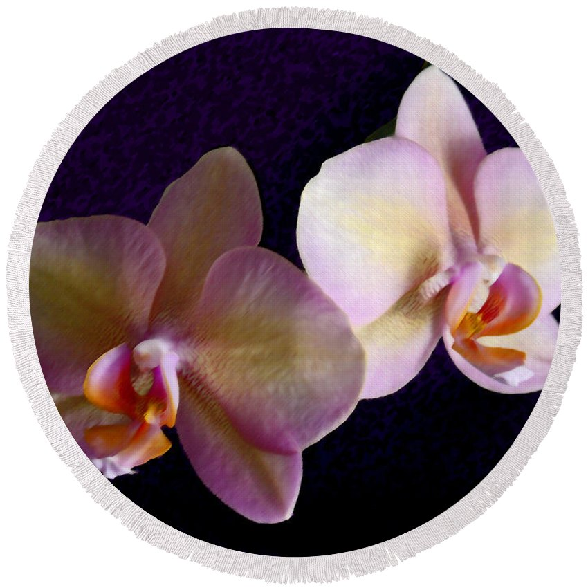 Orchid Round Beach Towel featuring the photograph Orchid Light by Steve Karol