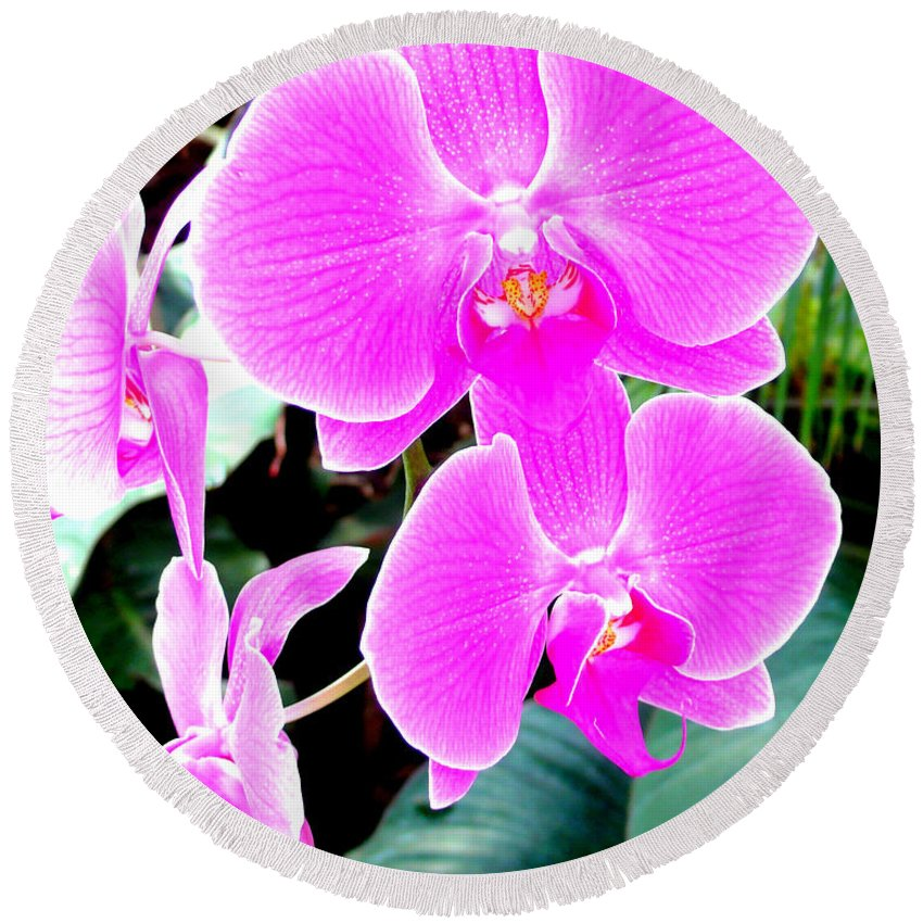 Orchid Round Beach Towel featuring the photograph Orchid Series 1 by Katy Hawk