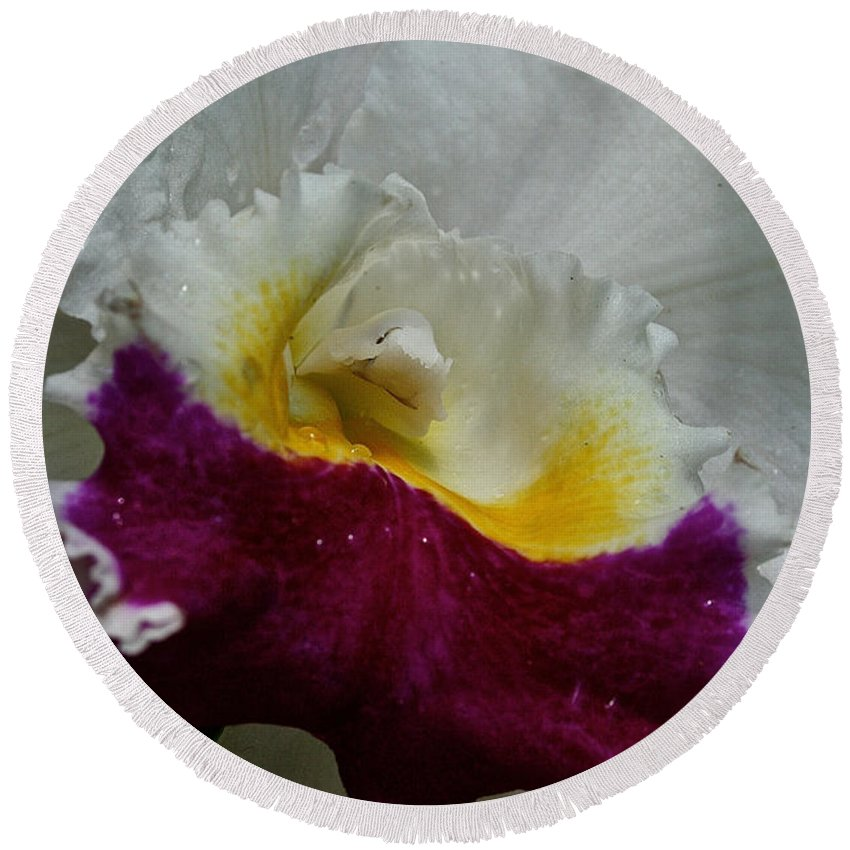 Flower Round Beach Towel featuring the photograph Orchid's Royal Carpet by Susan Herber