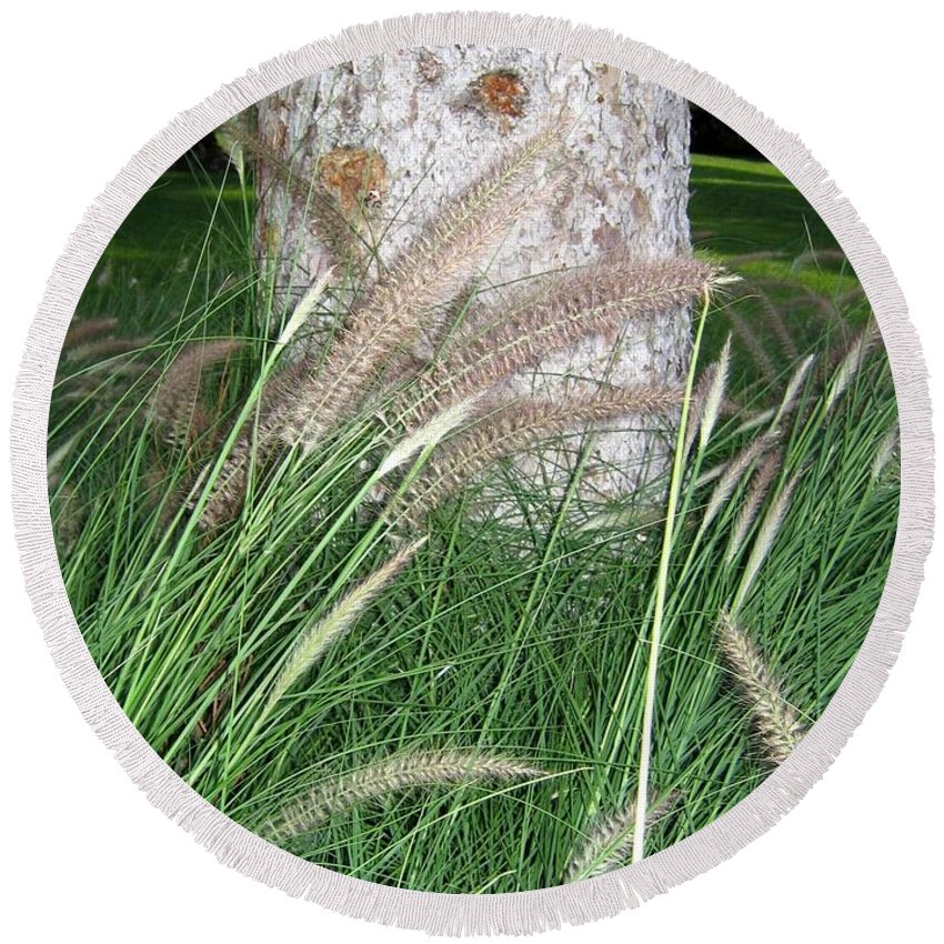 Ornamental Grass Round Beach Towel featuring the photograph Ornamental Grass by Will Borden