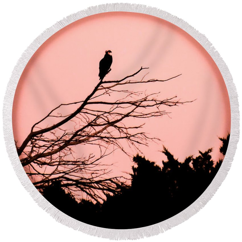 Full Moons Round Beach Towel featuring the photograph Osprey Moon by Karen Wiles