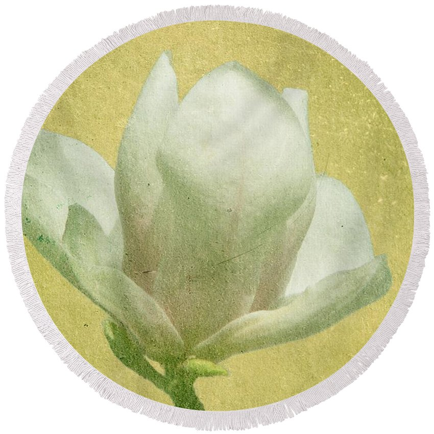Bloom Round Beach Towel featuring the photograph Outer Magnolia by Jeffrey Kolker