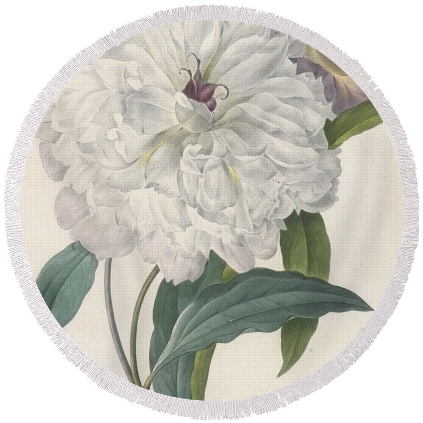 Peony Drawings Round Beach Towels