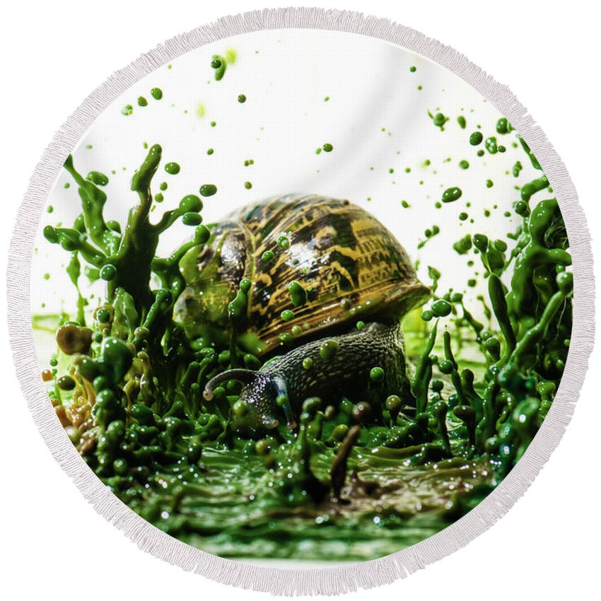 Impact Round Beach Towel featuring the photograph Paint Sculpture And Snail 3 by Guy Viner