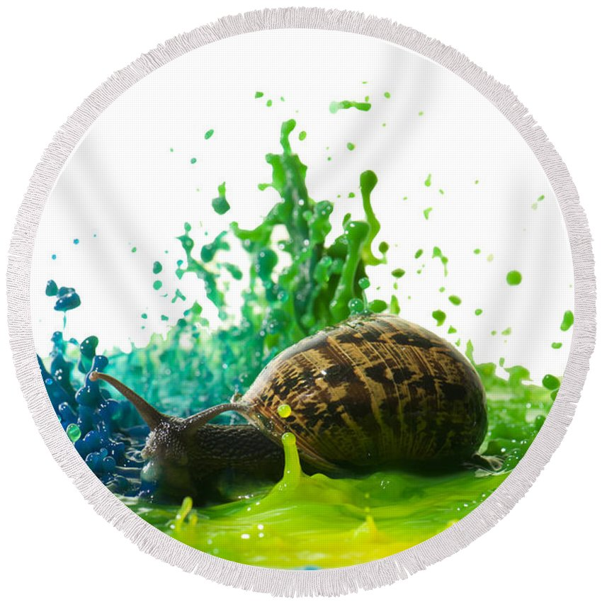 Impact Round Beach Towel featuring the photograph Paint Sculpture And Snail 4 by Guy Viner