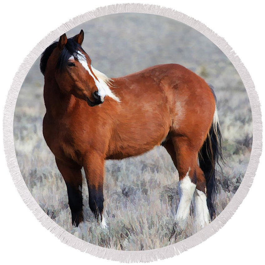 Horses Round Beach Towel featuring the photograph Painted Apache by Athena Mckinzie