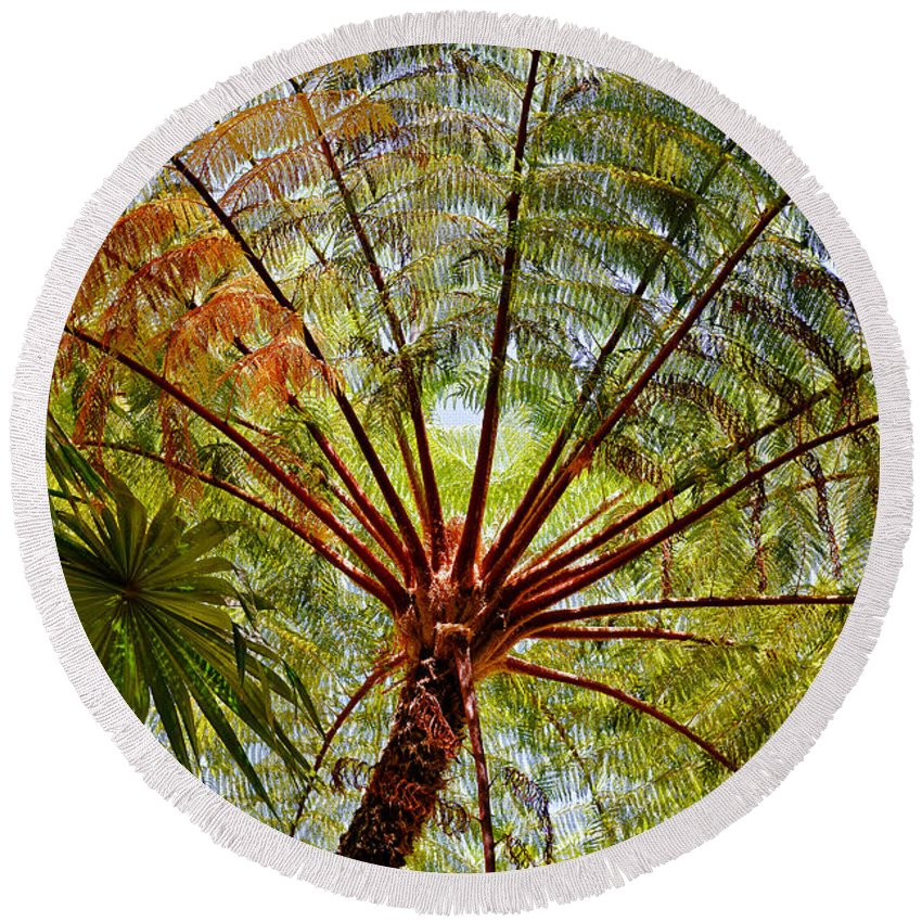 Palm Tree Round Beach Towel featuring the photograph Palm Canopy by Jim Thompson