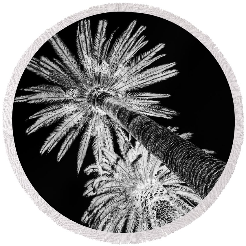 Square Round Beach Towel featuring the digital art Palm Tree Black by Alessandro Martinetti