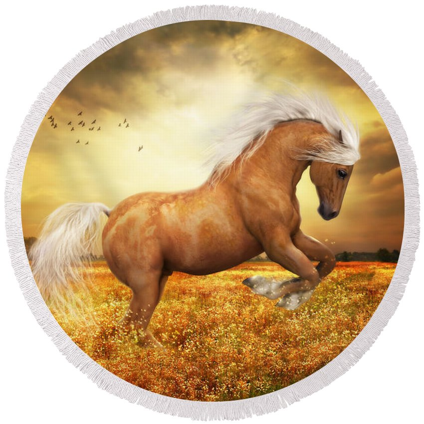 Palomino Round Beach Towel featuring the painting Palomino Horse Sundance by Shanina Conway