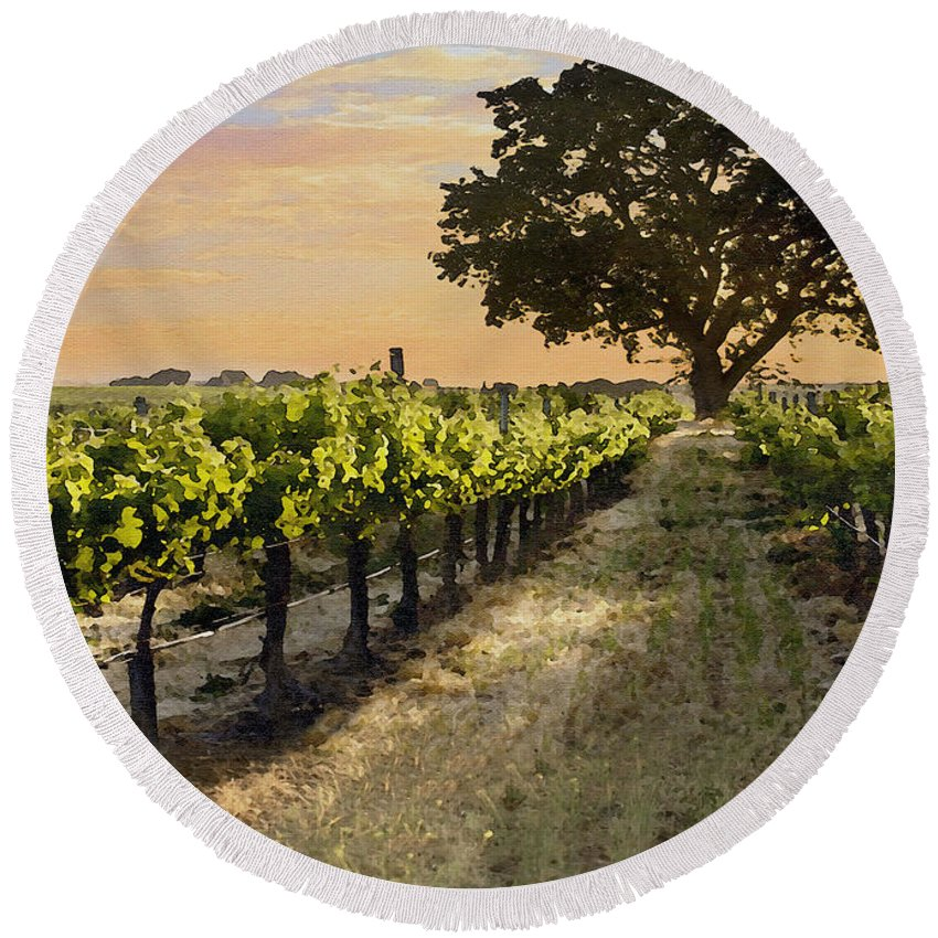 Vineyard Round Beach Towel featuring the photograph Paso Vineyard by Sharon Foster