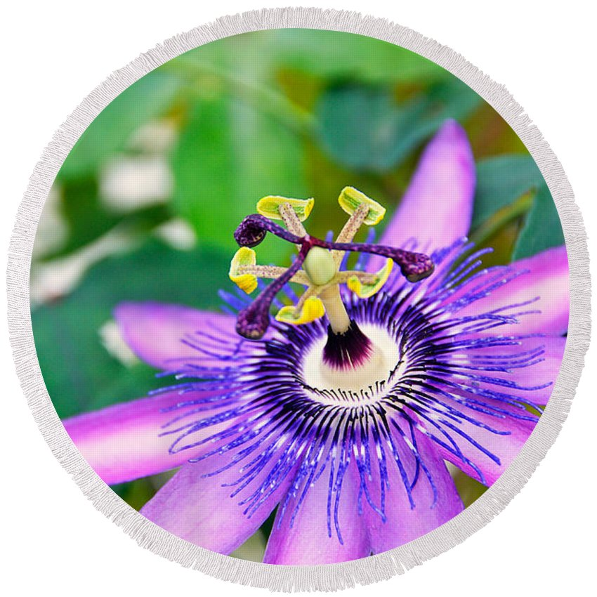 David Lawson Photography Round Beach Towel featuring the photograph Passion Flower by David Lawson