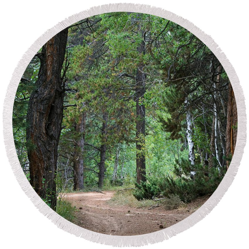 Path Through The Pines Round Beach Towel featuring the photograph Path Through The Pines - Casper Mountain - Casper Wyoming by Diane Mintle
