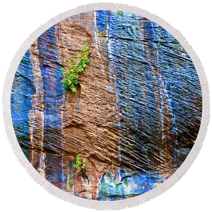 Pattern On Wet Canyon Wall From River Walk In Zion Canyon In Zion National Park Round Beach Towel featuring the photograph Pattern On Wet Canyon Wall From River Walk In Zion Canyon In Zion National Park-utah by Ruth Hager