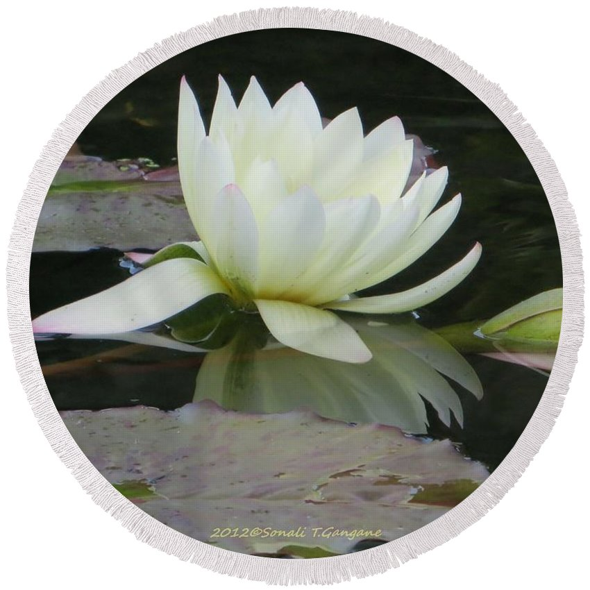 White Water Lily Round Beach Towel featuring the photograph Peace And Enlightment by Sonali Gangane