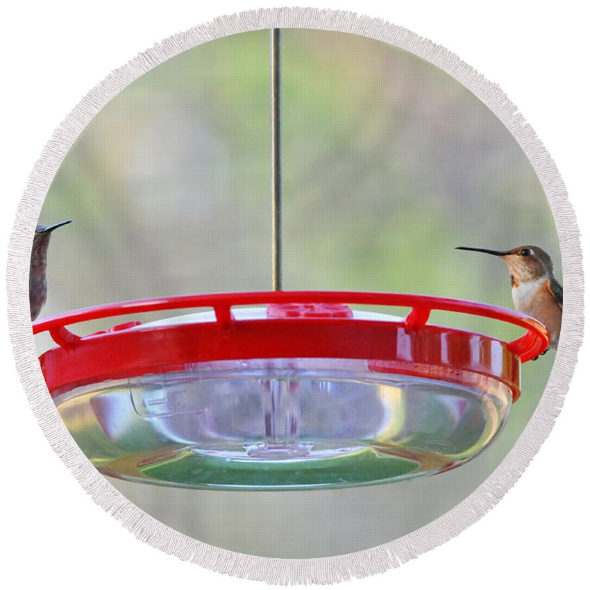 Hummer Round Beach Towel featuring the photograph Peace At The Feeder by Lynn Bauer