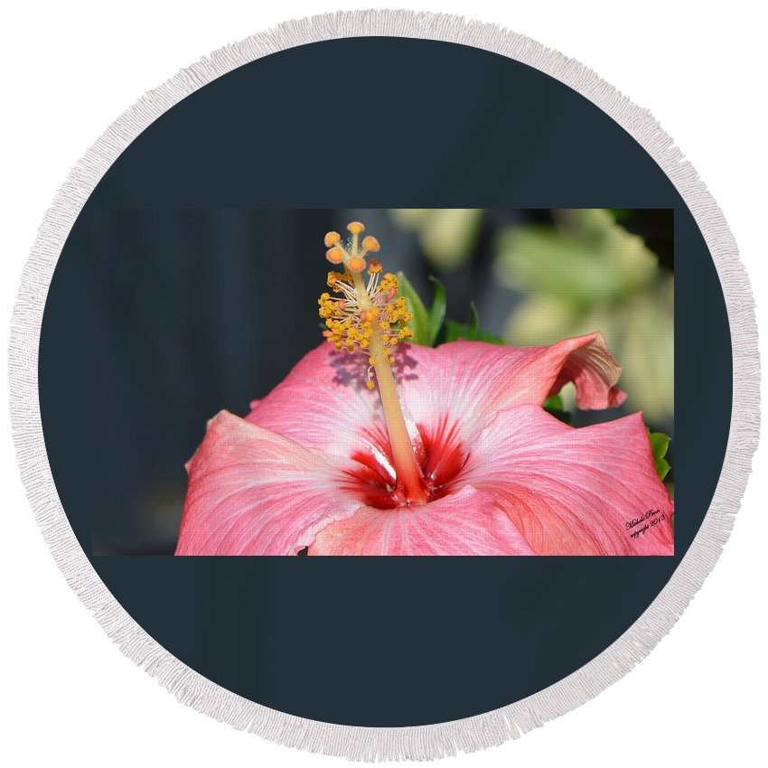 Flower Photograph Round Beach Towel featuring the photograph Peaceful Tingles - Signed by Michele Penn