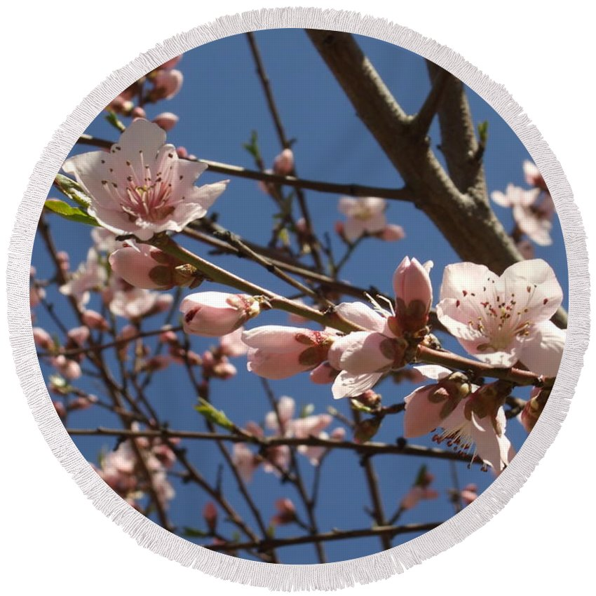 Round Beach Towel featuring the photograph Peach Blossoms by Katerina Naumenko