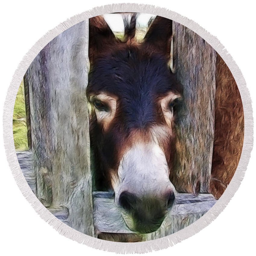Donkey Round Beach Towel featuring the photograph Peeking Thru The Fence by Athena Mckinzie