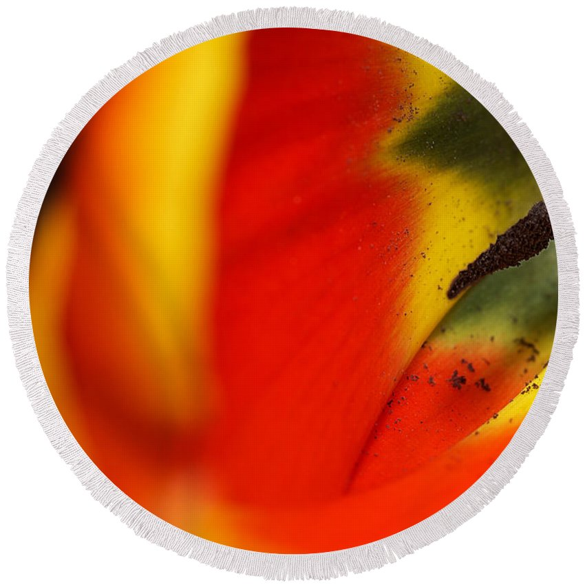 Depth Of Field Round Beach Towel featuring the photograph Peering Into The Heart Of A Tulip by Lisa Knechtel