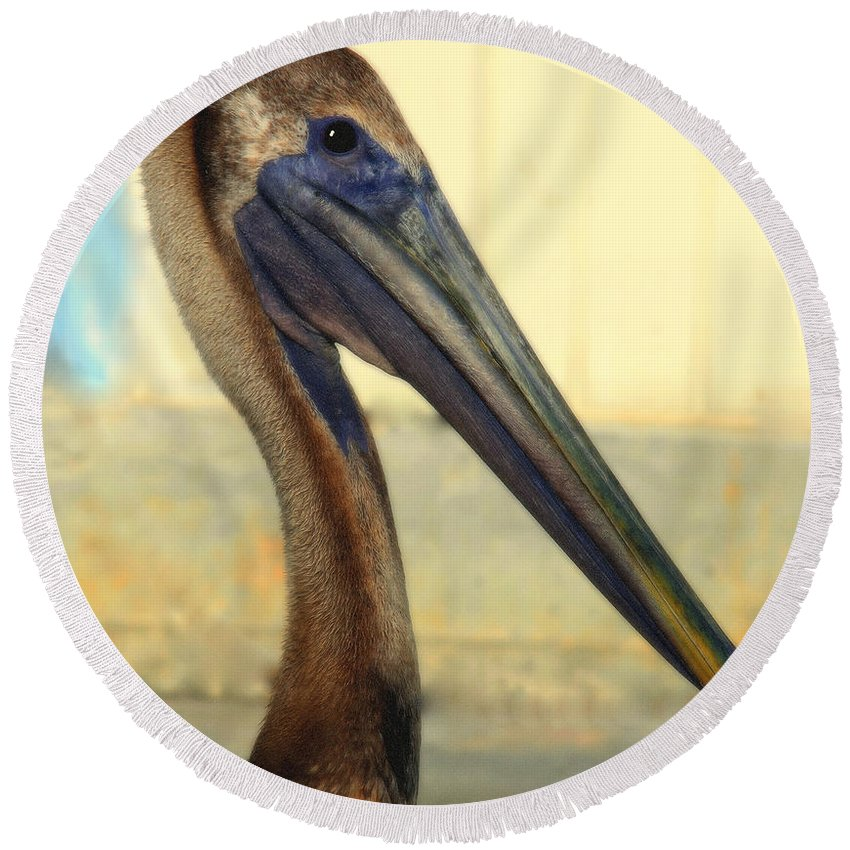 Pelicans Round Beach Towel featuring the photograph Pelican Bill by Karen Wiles