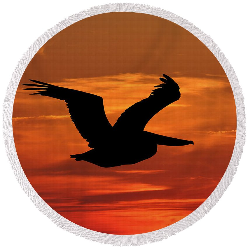 Pelican Silhouette Round Beach Towel featuring the photograph Pelican Profile by Al Powell Photography USA