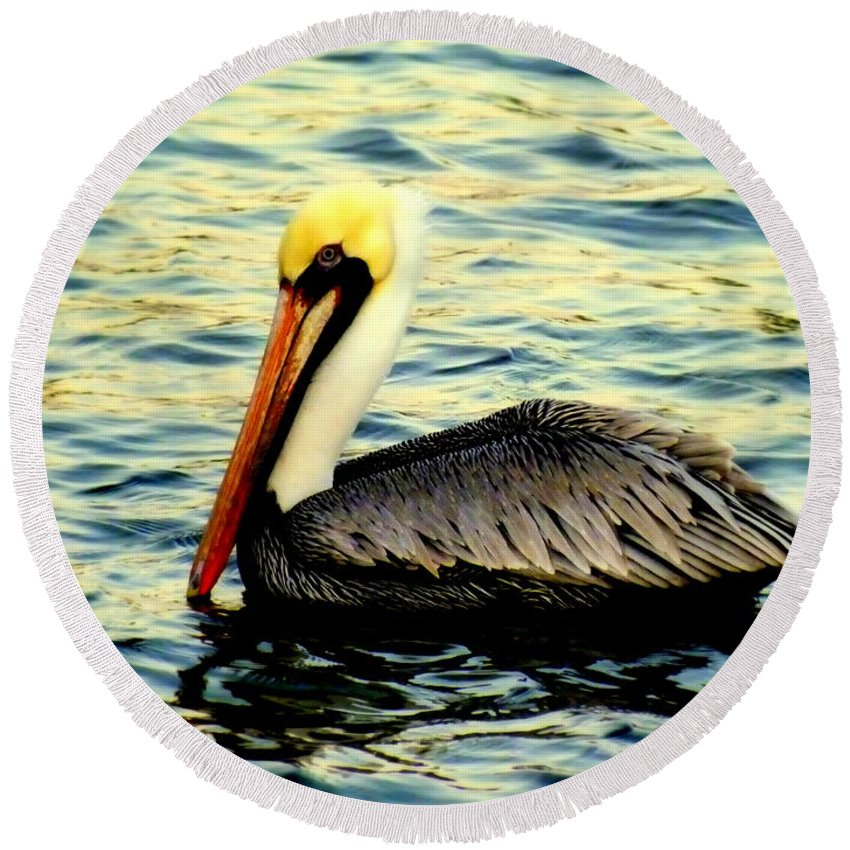 Pelicans Round Beach Towel featuring the photograph Pelican Waters by Karen Wiles
