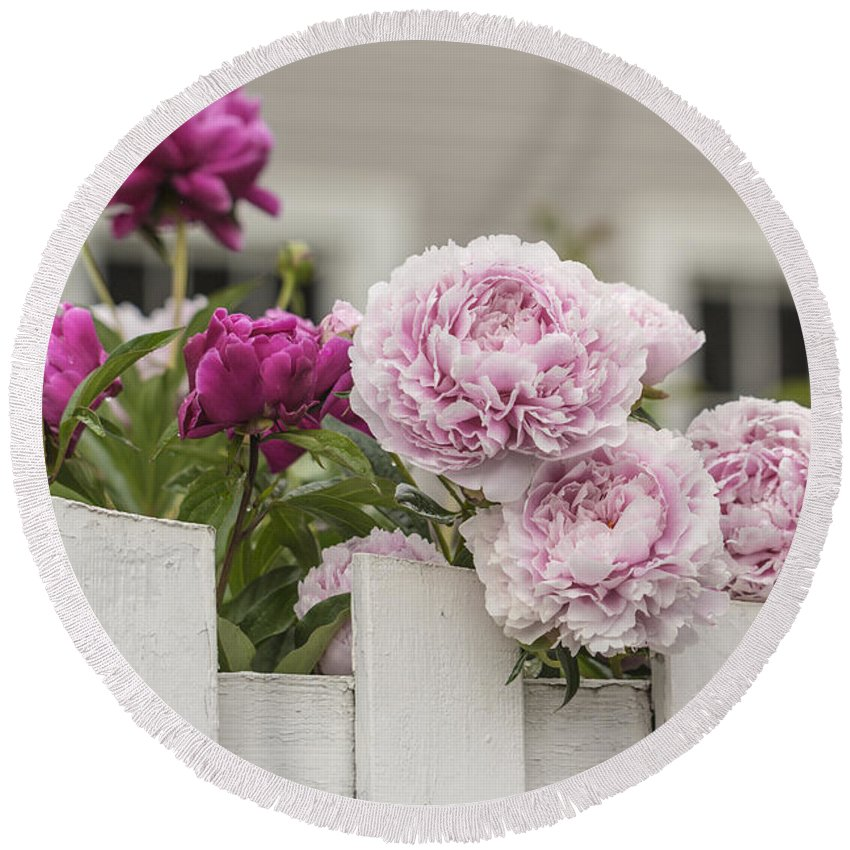 Jacksonville Round Beach Towel featuring the photograph Peonies On A Picket by Karen Forsyth