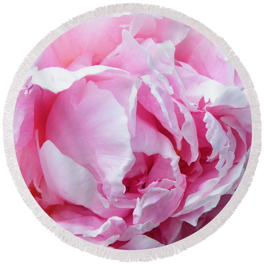 Peony Round Beach Towel featuring the photograph Peony Punch by Brian Boyle