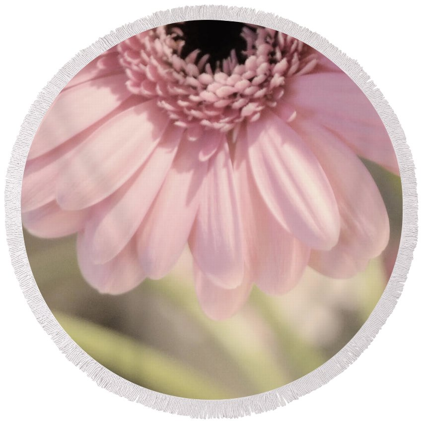 Pink Round Beach Towel featuring the photograph Personally Pink by Traci Cottingham