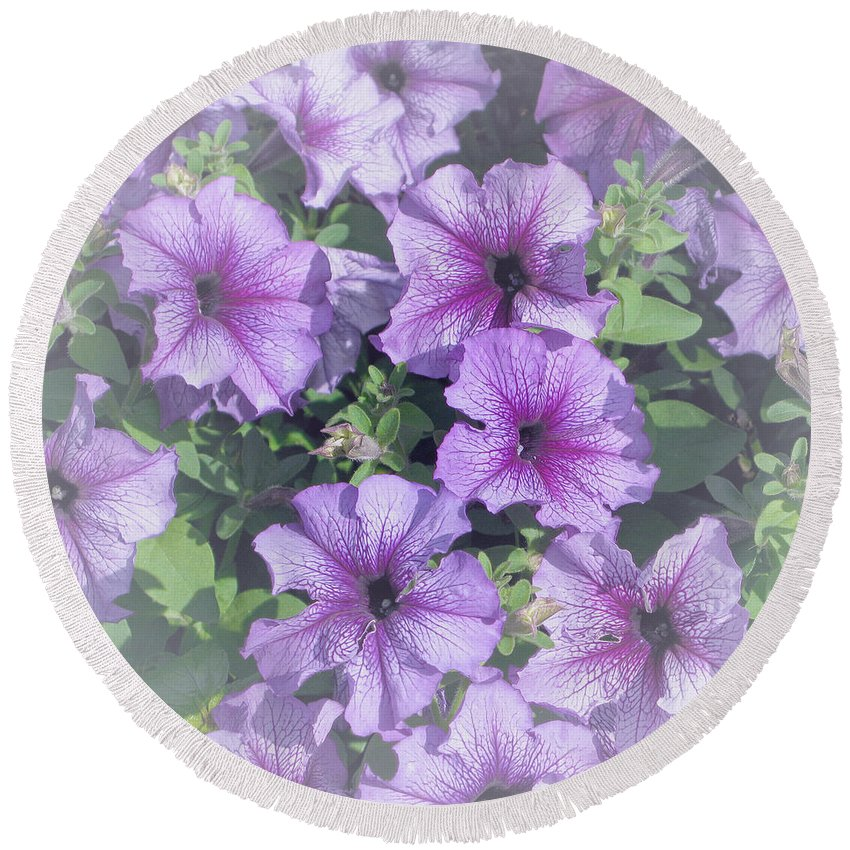 Petunias Round Beach Towel featuring the photograph Petunia Patch by Ann Horn