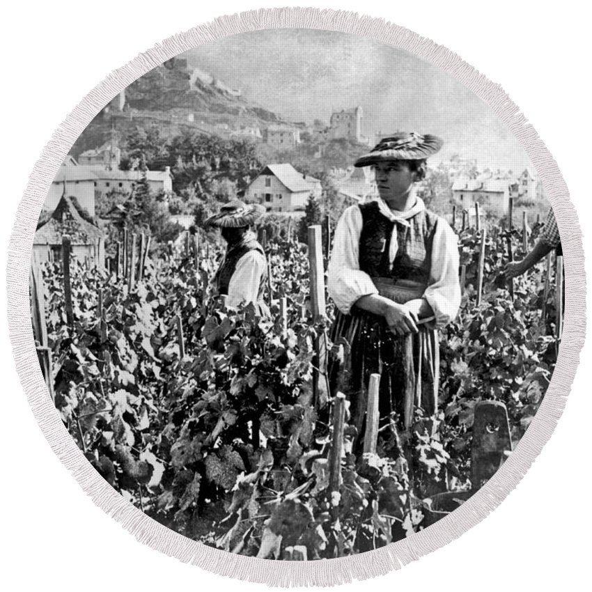 1920s Round Beach Towel featuring the photograph Picking Grapes In Switzerland by Underwood Archives